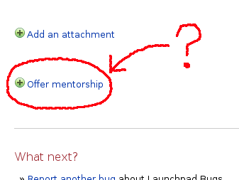 Partial screen capture of a page showing mentoring